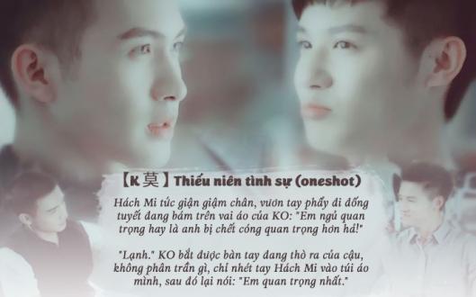 thieu-nien-tinh-su